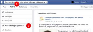 Facebook-Comment-Programmer-Publication-3